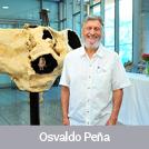 Osvaldo Peña